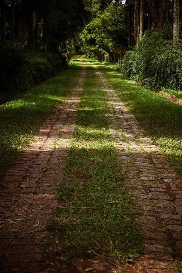 Estrada com pavimento de pedra imagens de stock