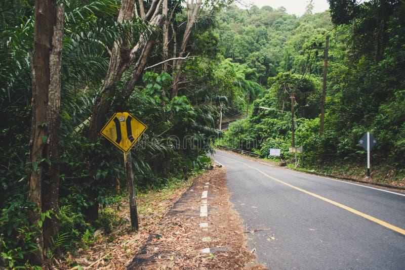 Estrada completamente na floresta com guidepost velho imagem de stock royalty free