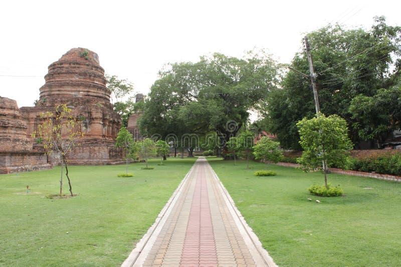 estrada Cor-de-rosa-amarela do tijolo em Wat Chaimonkol fotos de stock royalty free