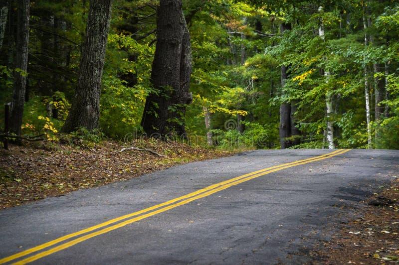 Estrada da montanha de duas pistas com linhas amarelas dobro na floresta de Maine imagens de stock