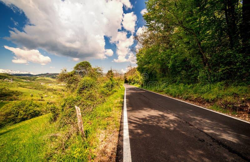 Estrada da montanha no dia morno do verão através da floresta fotografia de stock royalty free
