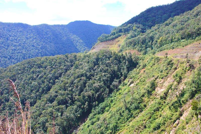 Estrada da montanha Paisagem com rochas fotos de stock