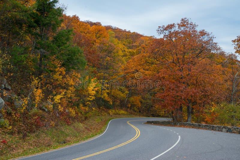 Estrada da movimentação da skyline no parque nacional de Shenandoah foto de stock royalty free