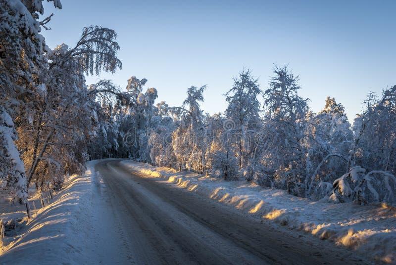 Estrada da neve fotografia de stock royalty free
