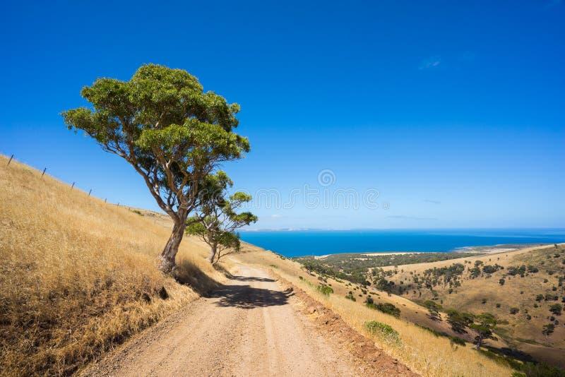 Estrada da praia fotografia de stock royalty free