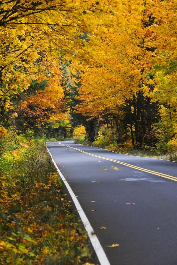 Estrada da queda da borda da estrada fotos de stock royalty free