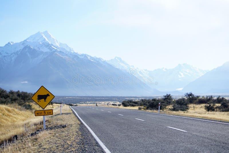 A estrada da vaca assina dentro a estrada de Nova Zelândia com renge bonito da montanha foto de stock royalty free