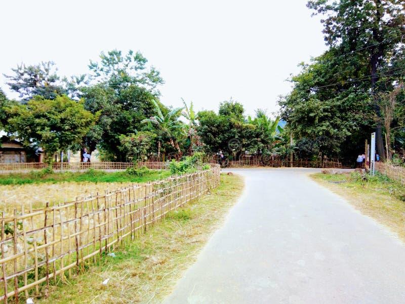 Estrada das áreas do campo de Assam fotos de stock royalty free
