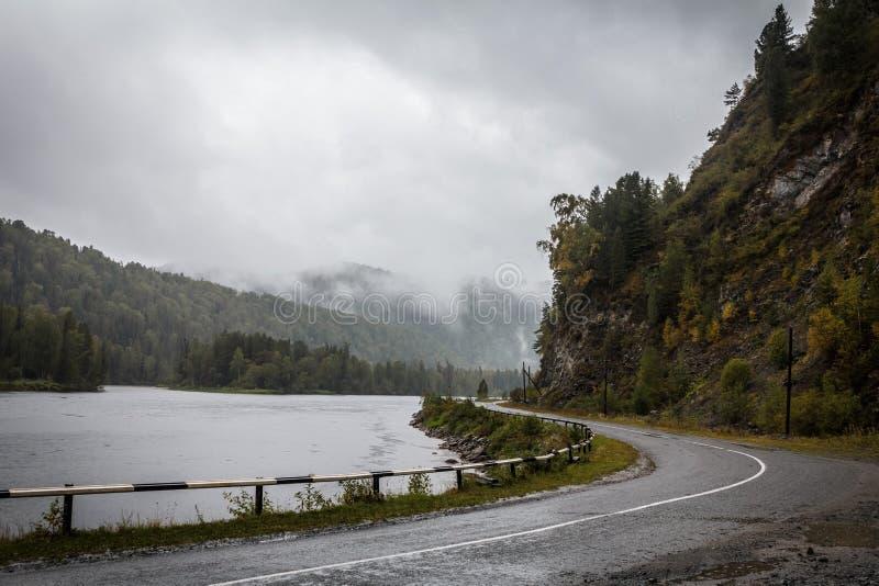 Estrada de Altay e floresta do rio no fundo fotografia de stock