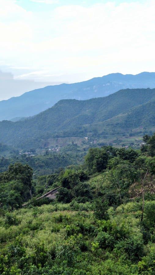 Estrada de Araku Ghat coberta com o Greenary foto de stock