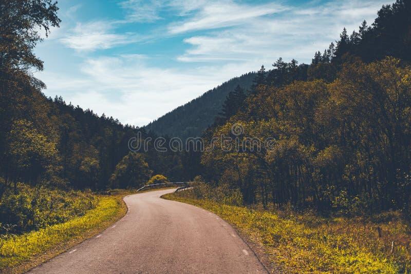 Estrada de dobra em montanhas de Altay do outono foto de stock royalty free