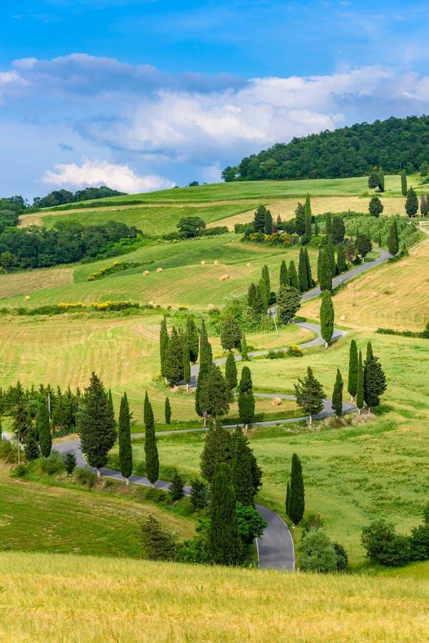 Estrada de enrolamento cênico da árvore de Cypress em Monticchiello - Valdorcia - perto de Siena, Toscânia, Itália, Europa fotos de stock