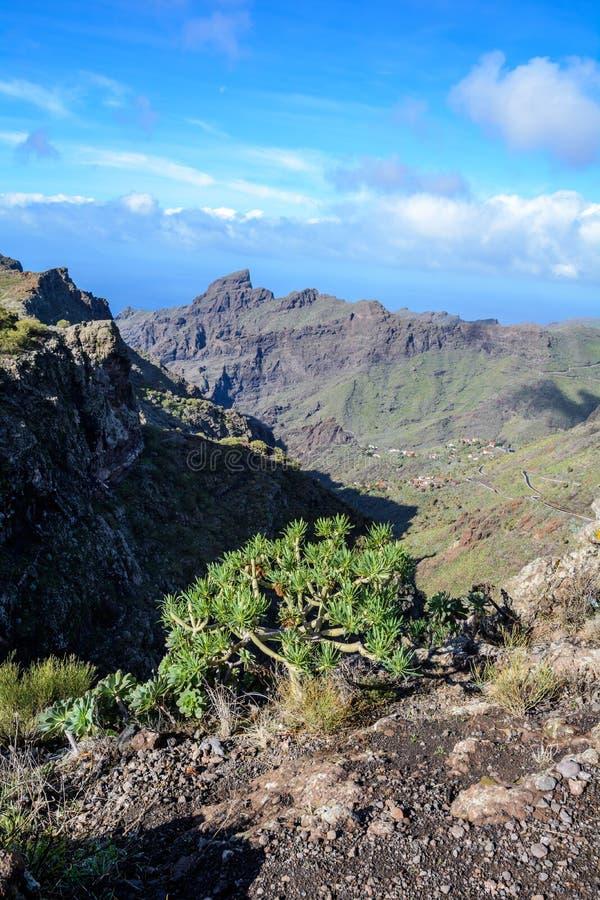 Estrada de enrolamento das montanhas que conduz à aldeia de Masca, Tenerife, Espanha imagens de stock royalty free