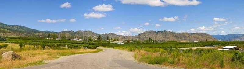 Estrada de enrolamento do vale do vinho de Osoyoos imagem de stock royalty free