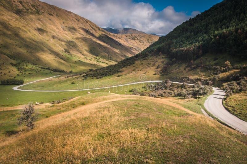 Estrada de enrolamento do vale na maneira ao lago Queenstown Moke fotografia de stock