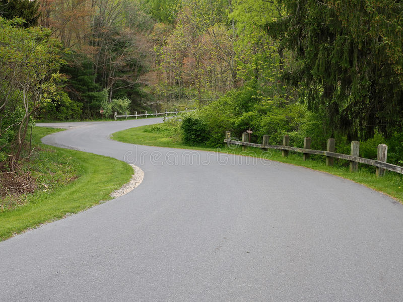 Estrada de enrolamento na floresta verde fotos de stock royalty free