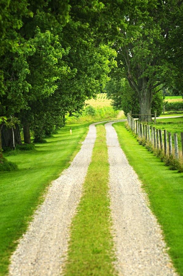 Estrada de exploração agrícola imagens de stock royalty free