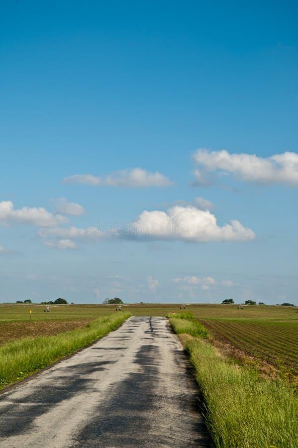 Estrada de exploração agrícola ensolarada fotografia de stock royalty free