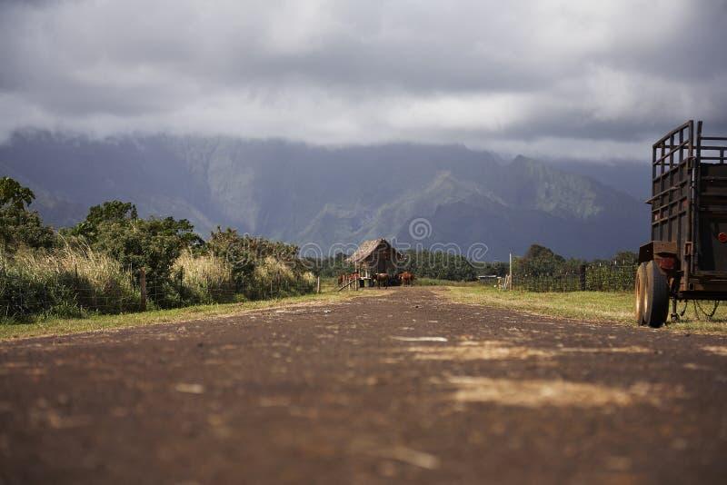Download Estrada De Exploração Agrícola - Kauai, Havaí Imagem de Stock - Imagem de sujeira, aberto: 65579175