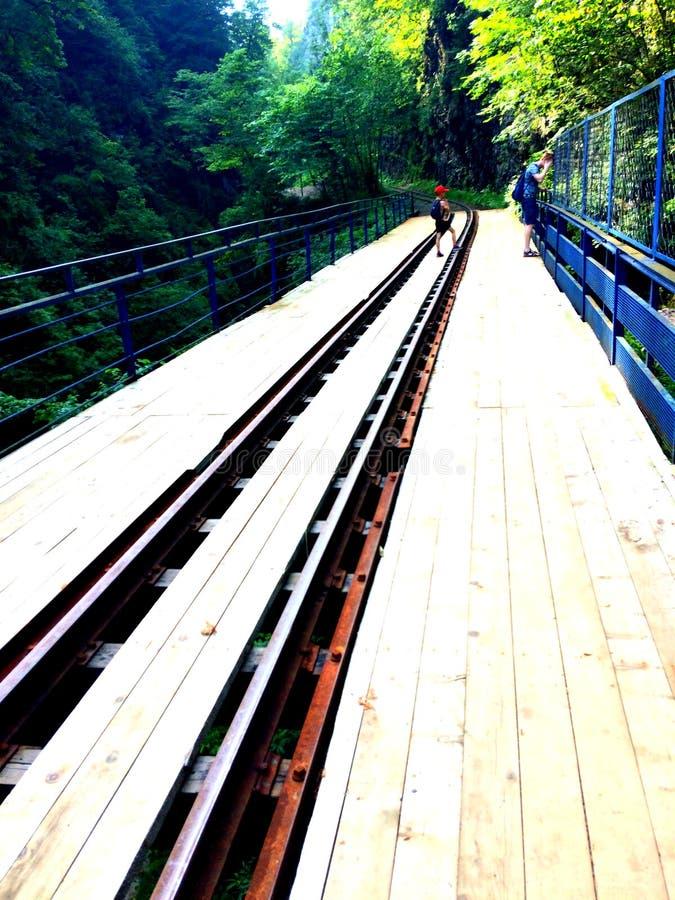 estrada de ferro através do rio, estrada de madeira na floresta foto de stock
