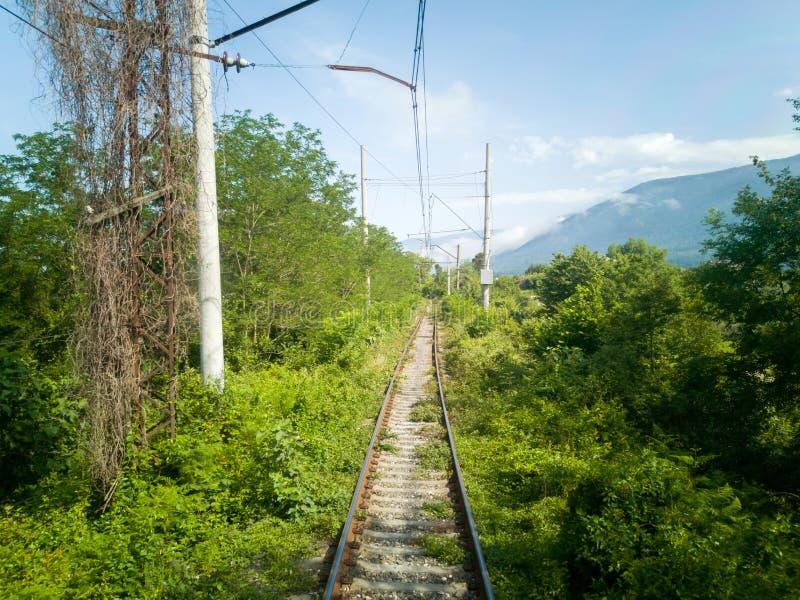 Estrada de ferro atrav?s das montanhas Trajeto selvagem para o trem na Abkhásia fotos de stock