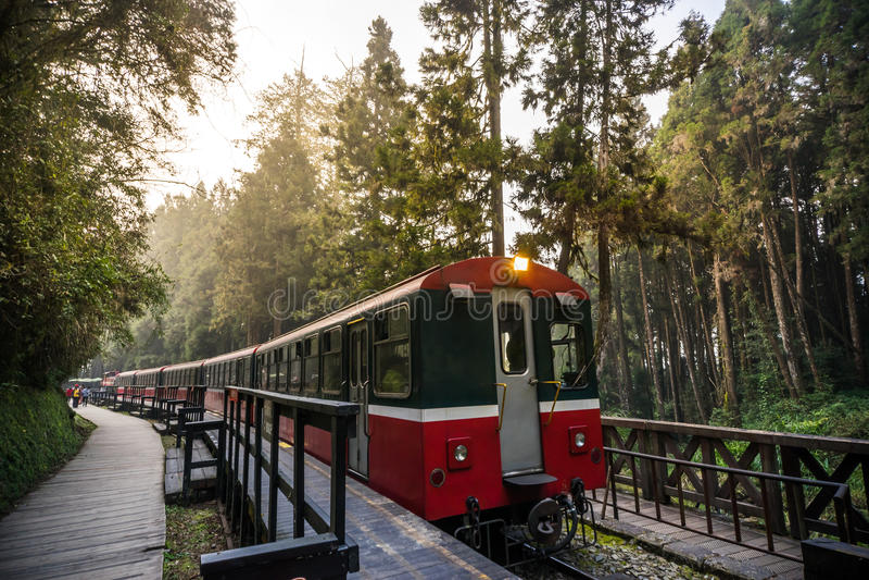 Estrada de ferro da floresta de Alishan fotografia de stock royalty free