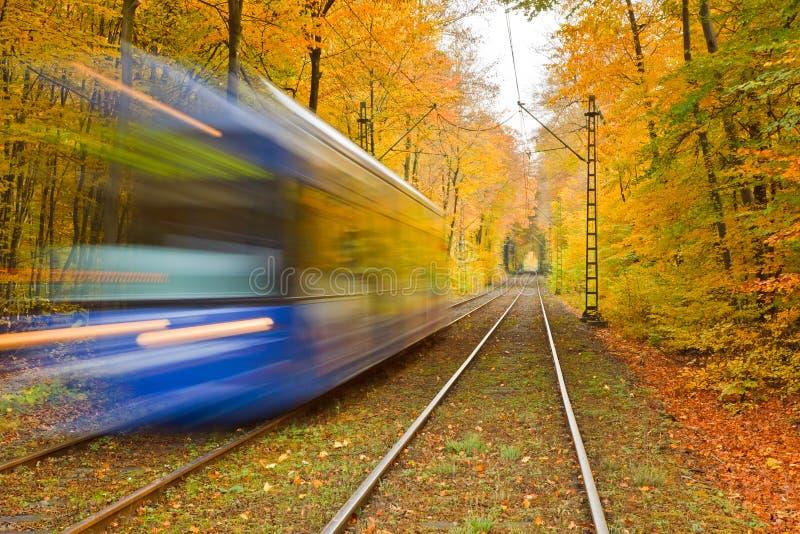 Estrada de ferro na floresta do outono fotos de stock royalty free