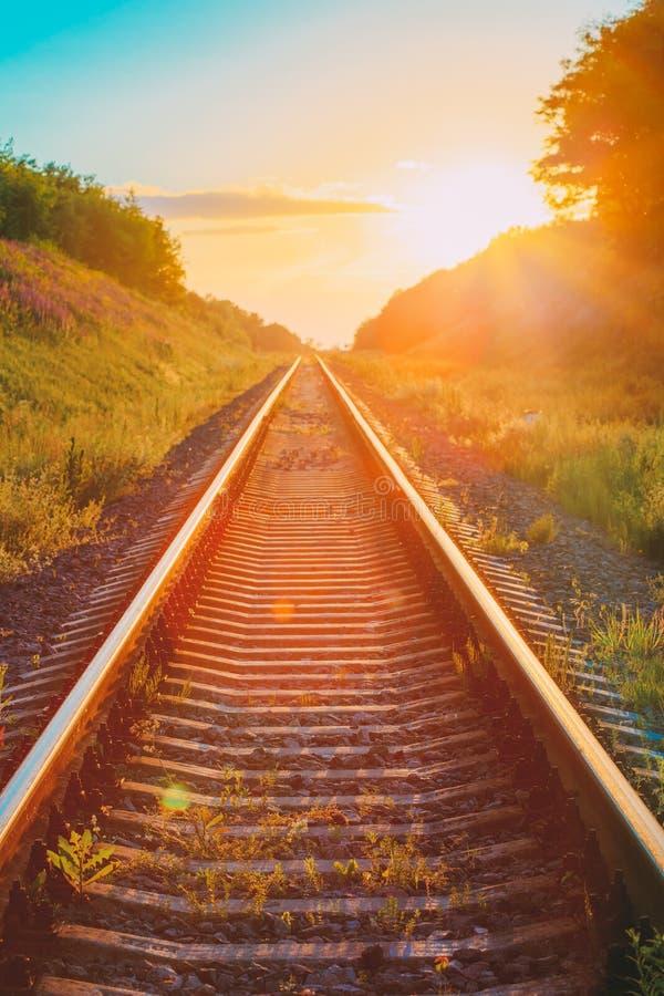 Estrada de ferro que atravessa a direito o verão Hilly Meadow To Suns foto de stock royalty free