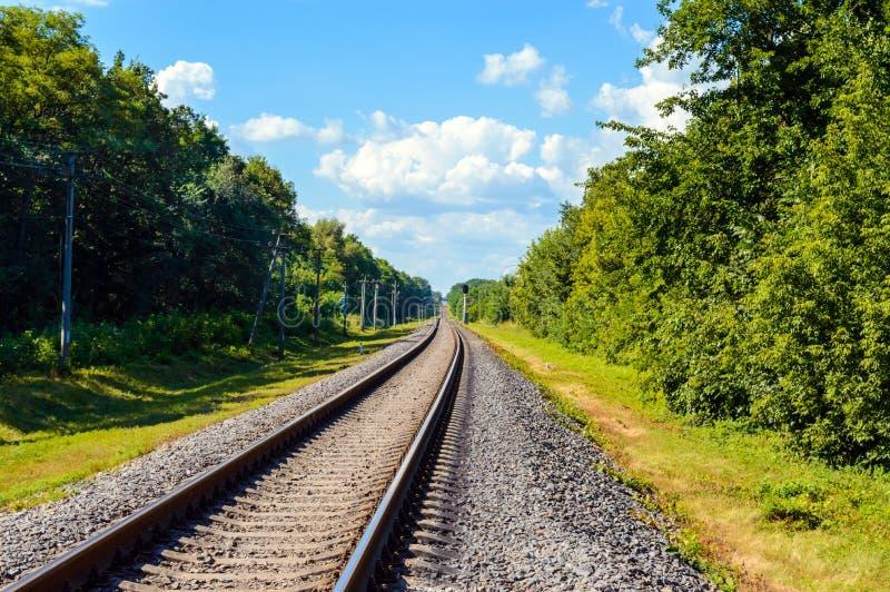 A estrada de ferro vai ao horizonte, em ambos os lados da floresta densa verde foto de stock royalty free