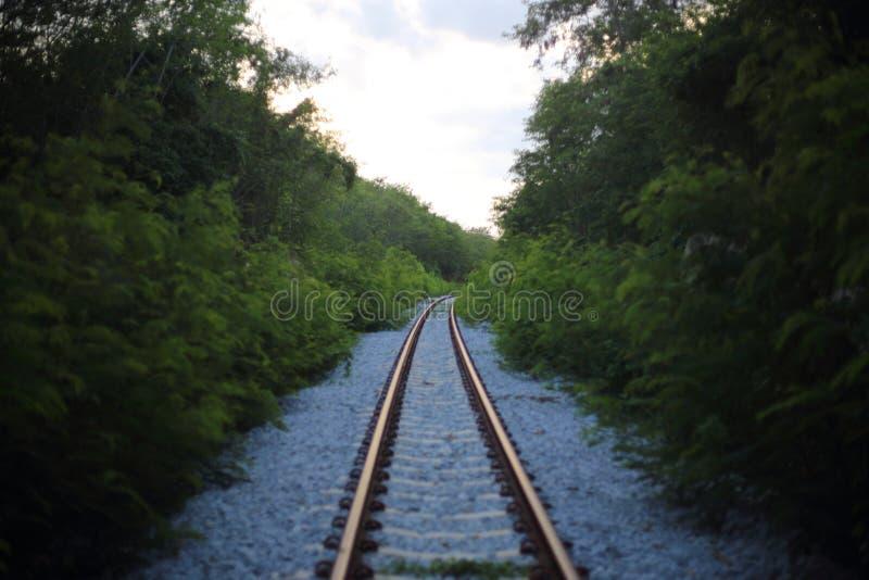 A estrada de ferro vai ao horizonte na paisagem verde fotos de stock royalty free