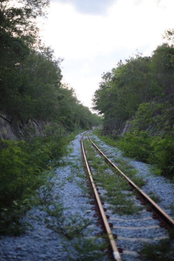 A estrada de ferro vai ao horizonte na paisagem verde imagens de stock