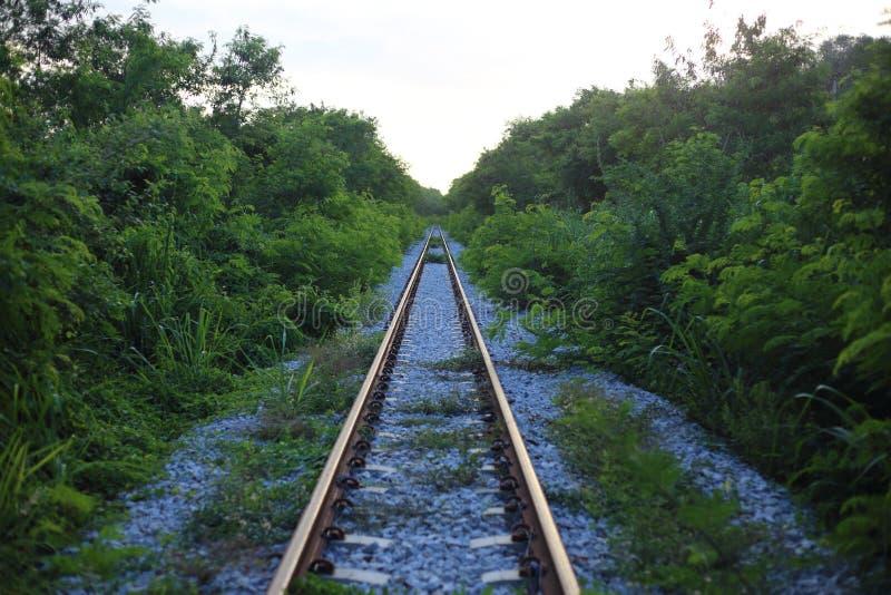 A estrada de ferro vai ao horizonte na paisagem verde imagens de stock royalty free