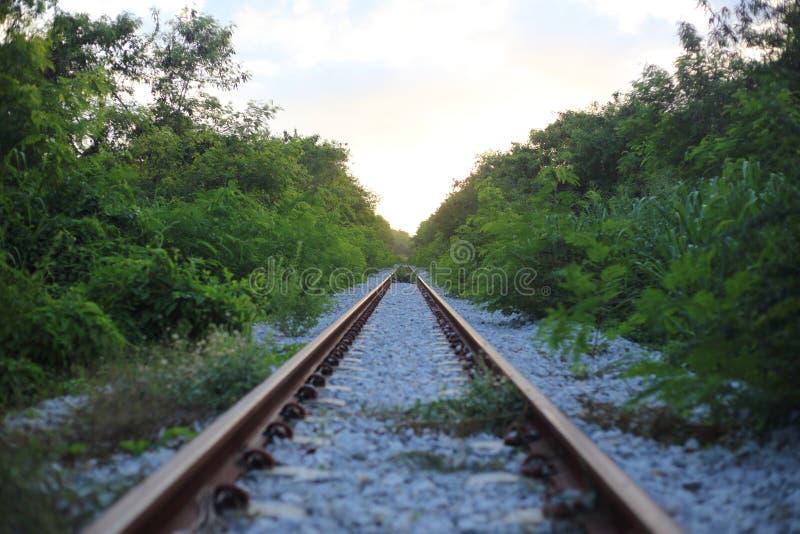 A estrada de ferro vai ao horizonte na paisagem verde foto de stock