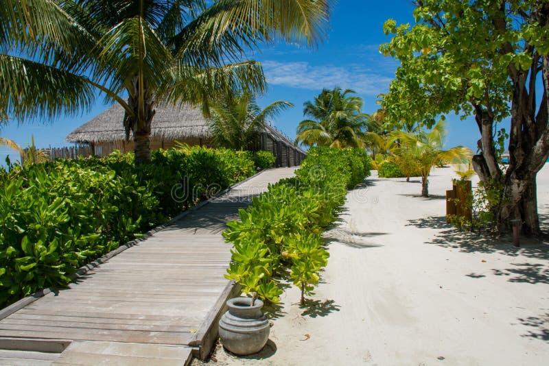 Estrada de madeira aos bungalos na ilha tropical foto de stock
