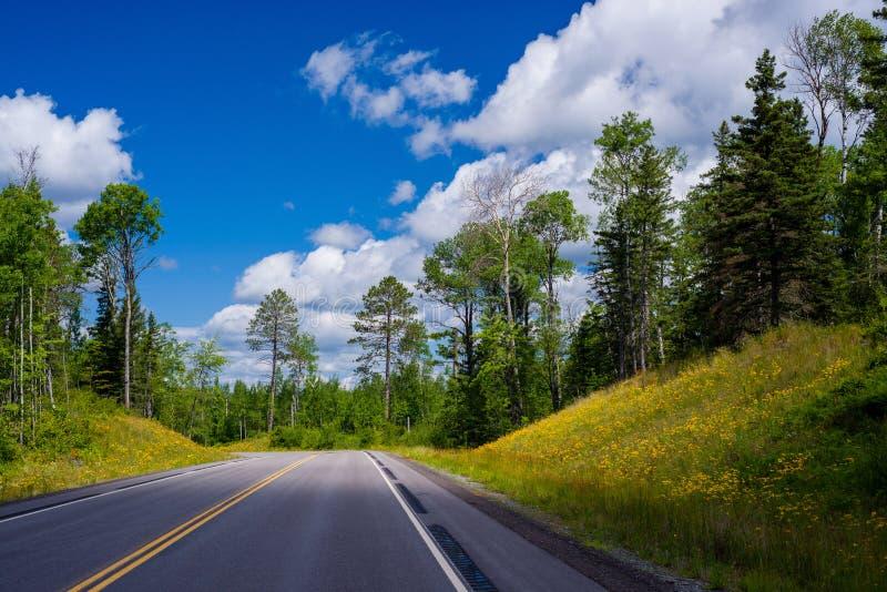 Estrada 1 de Minnesota, verão imagem de stock royalty free