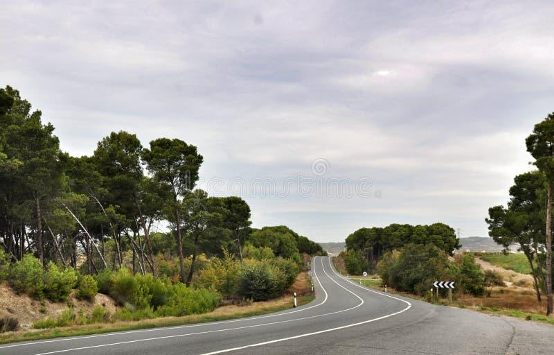 A estrada de Olite, Navarra, Espanha fotos de stock