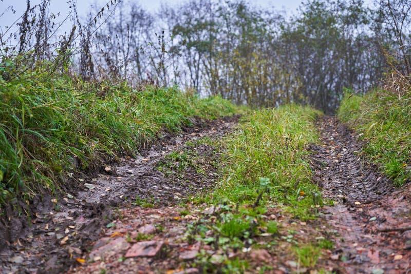 Estrada de sujeira quebrada na estrada Difícil Floresta do outono imagem de stock royalty free