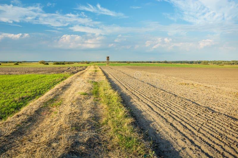 Estrada de terra ao lado de um campo arado fotografia de stock royalty free