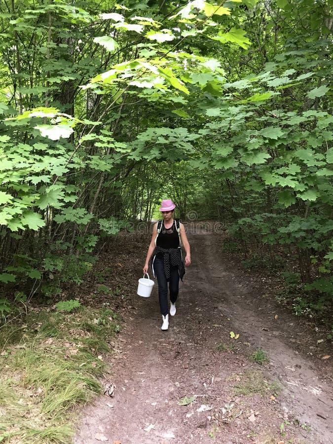 A estrada de terra na floresta nela vai uma menina da máquina desbastadora do cogumelo com uma cubeta para cogumelos Em torno da  imagens de stock