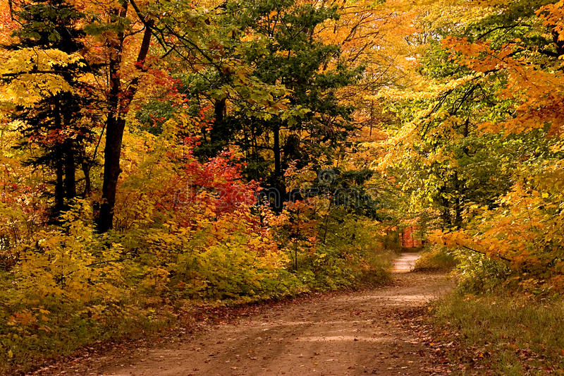 Estrada de terra na península superior de Outono-Michigan fotos de stock
