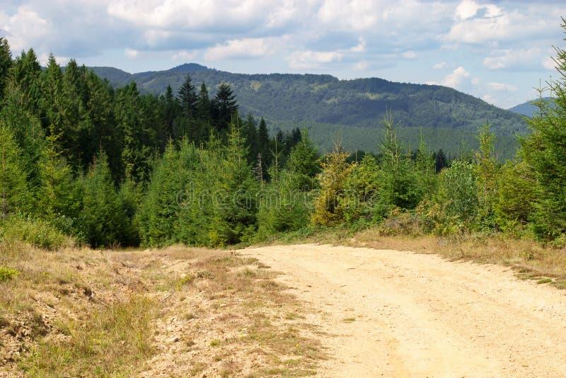 Download Estrada nas montanhas imagem de stock. Imagem de carpathians - 29844651