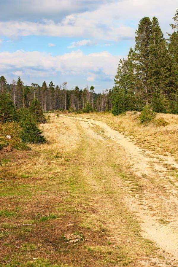Download Estrada nas montanhas imagem de stock. Imagem de viagem - 29844685
