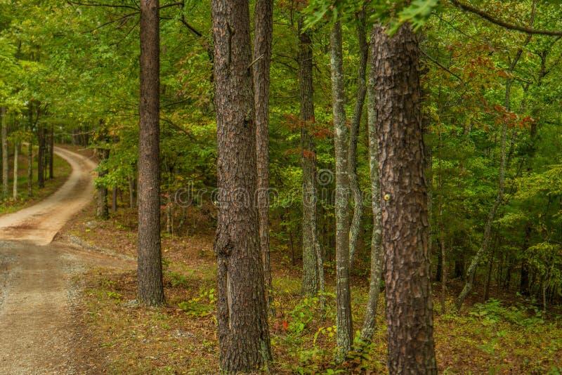 Estrada de terra no outono nas montanhas imagens de stock