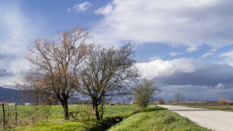 Estrada de terra de Quietr no campo bonito de Tuscan perto de Pisa, Itália foto de stock