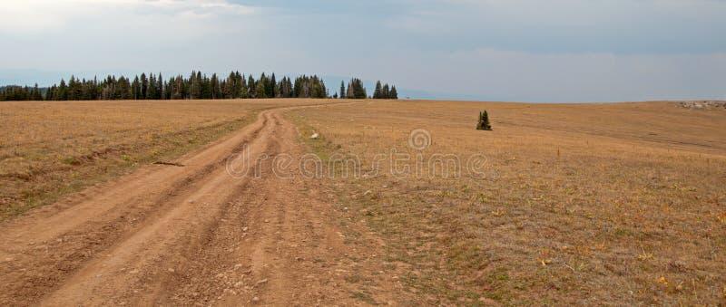 Estrada de terra de Sykes Ridge através da escala do cavalo selvagem das montanhas de Pryor em Montana EUA imagem de stock royalty free