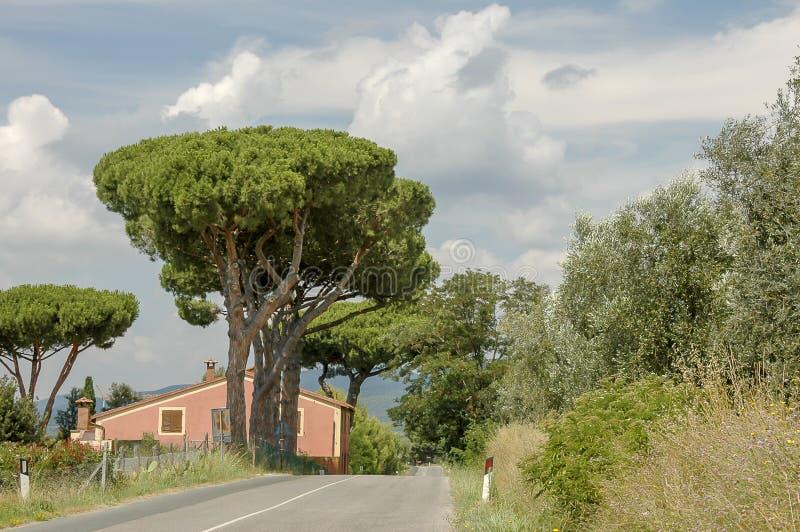 Estrada de Tuscan fotos de stock