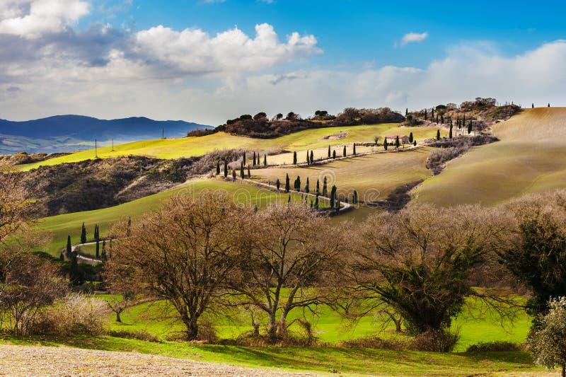 Estrada de Tuscan entre campos e árvores de cipreste em Itália foto de stock