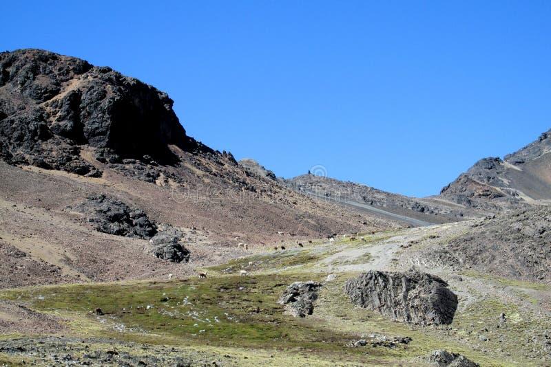 Estrada de Unparved nos Andes, Cordilheira real, Bolívia fotos de stock