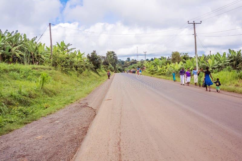 Estrada do campo em Tanzânia foto de stock