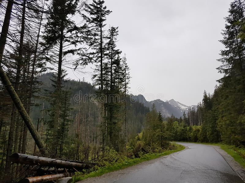 Estrada do campo nas montanhas de Tatry foto de stock royalty free